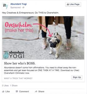 Abundant Yogi Facebook Ad | B
